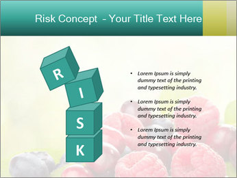 0000062662 PowerPoint Template - Slide 81