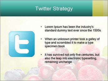 0000062662 PowerPoint Templates - Slide 9