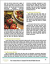 0000062662 Word Templates - Page 4