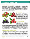 0000062662 Word Templates - Page 8