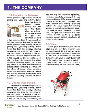0000062673 Word Template - Page 3