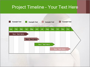 0000062676 PowerPoint Templates - Slide 25