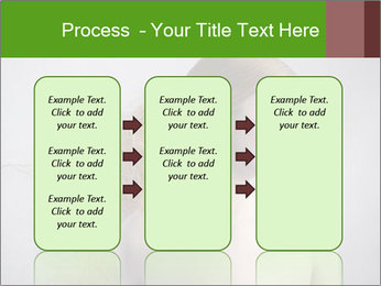 0000062676 PowerPoint Template - Slide 86