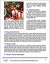 0000062677 Word Templates - Page 4