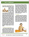 0000062678 Word Template - Page 3
