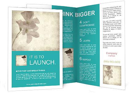 0000062680 Brochure Template