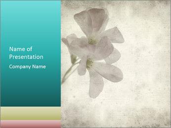 0000062680 PowerPoint Template - Slide 1
