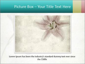 0000062680 PowerPoint Template - Slide 15