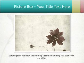 0000062680 PowerPoint Template - Slide 16