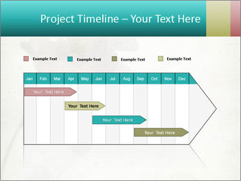 0000062680 PowerPoint Template - Slide 25