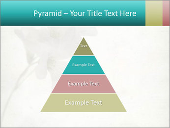 0000062680 PowerPoint Template - Slide 30