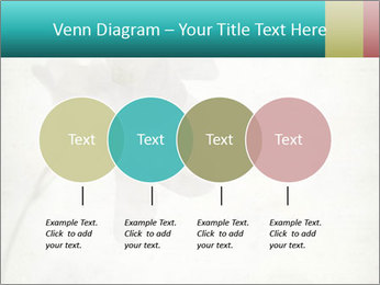 0000062680 PowerPoint Template - Slide 32
