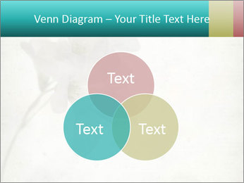 0000062680 PowerPoint Template - Slide 33