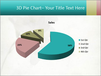 0000062680 PowerPoint Template - Slide 35
