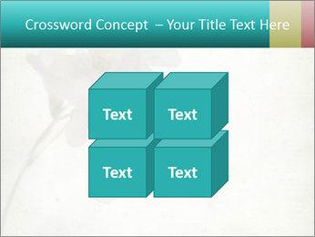 0000062680 PowerPoint Template - Slide 39