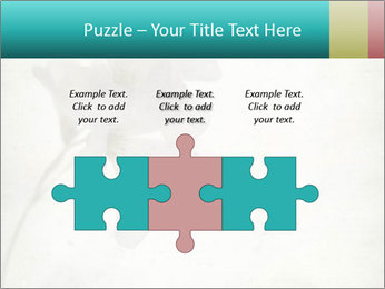 0000062680 PowerPoint Template - Slide 42