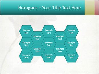 0000062680 PowerPoint Template - Slide 44