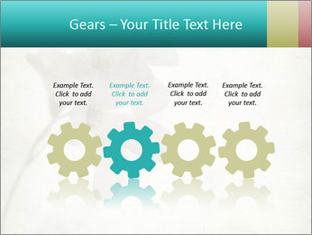 0000062680 PowerPoint Template - Slide 48