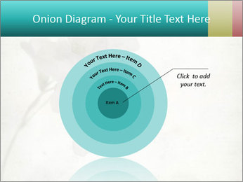 0000062680 PowerPoint Template - Slide 61