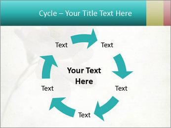 0000062680 PowerPoint Template - Slide 62