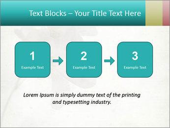 0000062680 PowerPoint Template - Slide 71