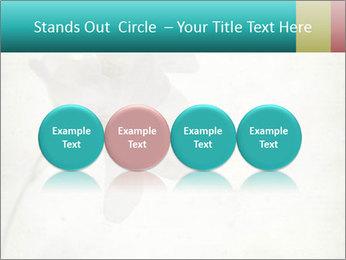 0000062680 PowerPoint Template - Slide 76