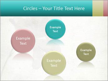 0000062680 PowerPoint Template - Slide 77