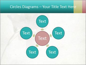 0000062680 PowerPoint Template - Slide 78