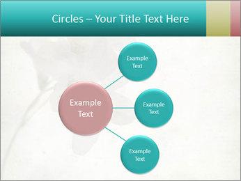 0000062680 PowerPoint Template - Slide 79