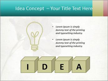 0000062680 PowerPoint Template - Slide 80