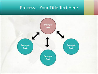 0000062680 PowerPoint Template - Slide 91