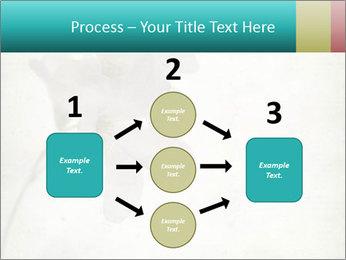 0000062680 PowerPoint Template - Slide 92
