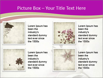 0000062682 PowerPoint Templates - Slide 14