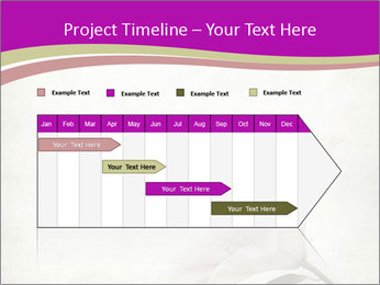 0000062682 PowerPoint Templates - Slide 25