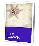 0000062683 Presentation Folder