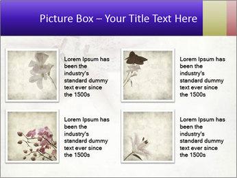 0000062683 PowerPoint Templates - Slide 14