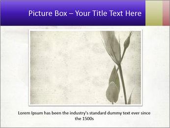 0000062683 PowerPoint Templates - Slide 16