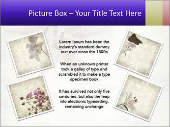 0000062683 PowerPoint Templates - Slide 24
