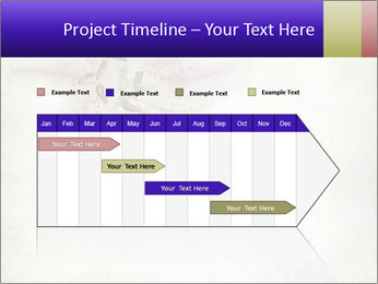 0000062683 PowerPoint Templates - Slide 25