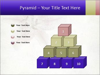 0000062683 PowerPoint Templates - Slide 31