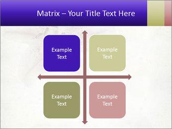 0000062683 PowerPoint Templates - Slide 37