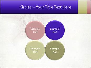 0000062683 PowerPoint Templates - Slide 38