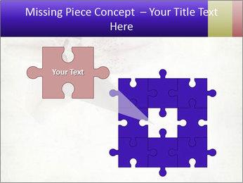 0000062683 PowerPoint Templates - Slide 45