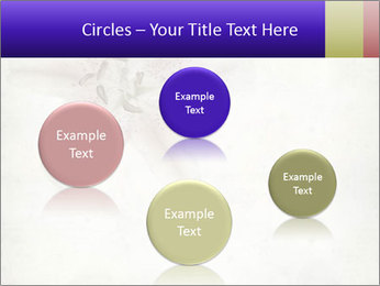 0000062683 PowerPoint Templates - Slide 77