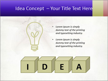 0000062683 PowerPoint Templates - Slide 80