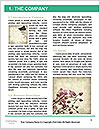 0000062684 Word Template - Page 3
