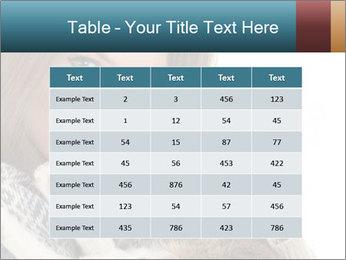 0000062687 PowerPoint Templates - Slide 55
