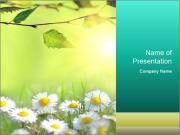 0000062693 PowerPoint Templates
