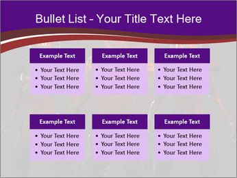 0000062702 PowerPoint Templates - Slide 56