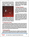 0000062705 Word Templates - Page 4